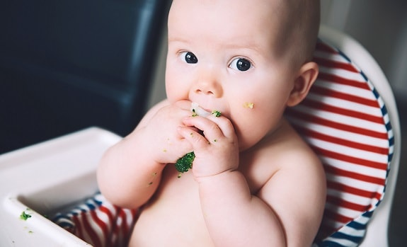 Baby Chewing on Broccoli